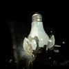 Frosted glass light bulb smashes on the end of a hammer