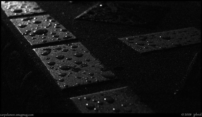 """14Mar08  early morning raindrops.  <a href=""""http://carpelumen.smugmug.com/gallery/2530267_2Xcsn/1/136058297_FcSnr/Medium"""">one year ago.</a>  f/5.6, 1/125s, iso 200."""