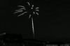 "(8Jul14)  palm tree fireworks.  <a href=""http://carpelumen.smugmug.com/Photography/2013/July13/30293485_qQqWmX#!i=2625396800&k=LgW428N"">one year ago.</a>  f/11, 4s, iso 200."