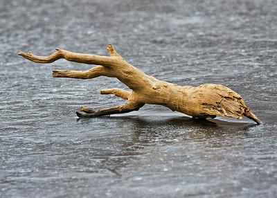 Ice Log