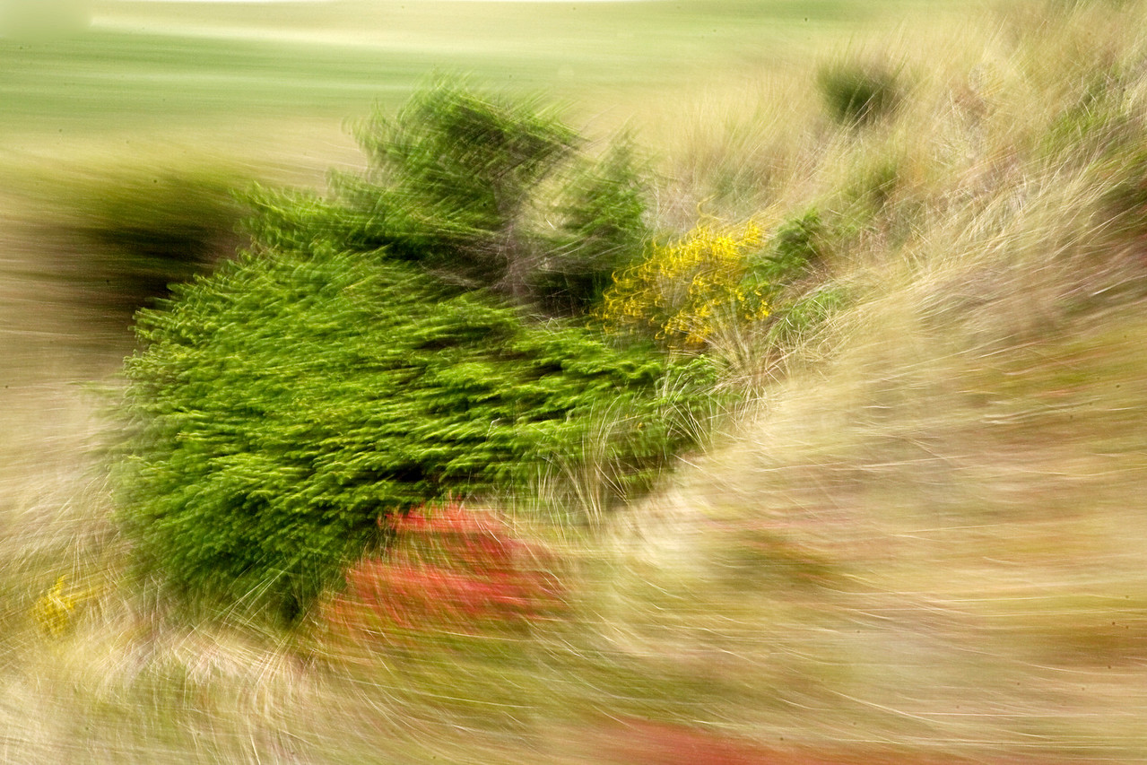 Abstract, Landscape in motion