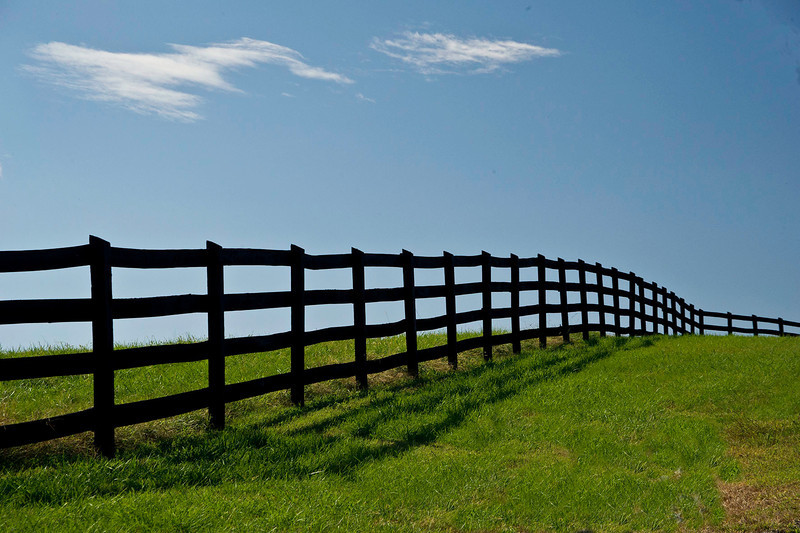 Fenced Horizon
