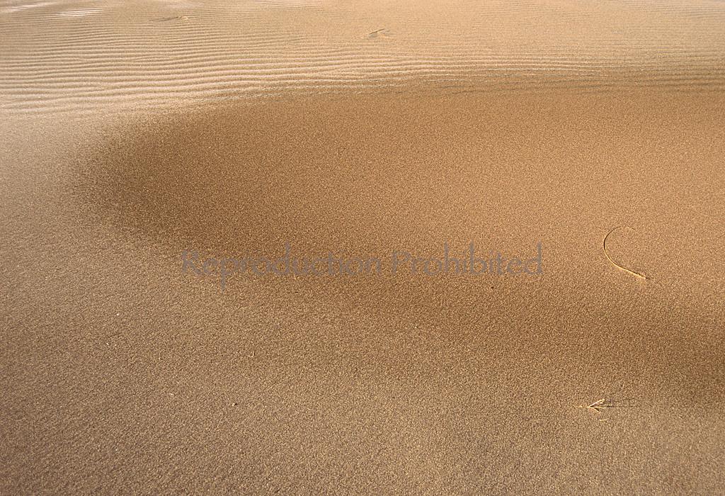 Whisper Great Sand Dunes National Park, CO