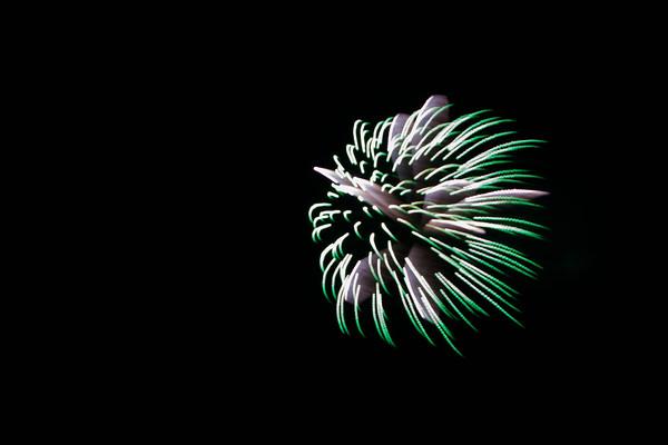 Vuurwerks Festival