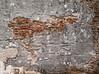 An old stone wall in Calveras, CA