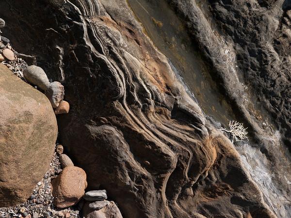 Point Lobos - Rocks and Seaweed