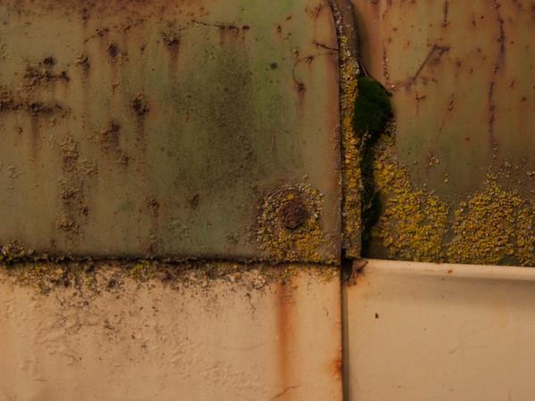 Rust and Peeling Paint - Casa de Fruta