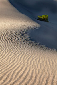 Sand ripples with plane, Death Valley
