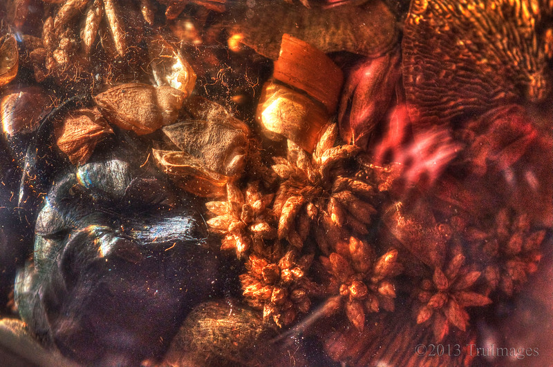 Mar 10<br /> Reflected hues<br /> <br /> This is the bottom of bowl of potpourri reflected off of the mirror underneath it on the dining room table. I thought the colors and objects made an interesting abstract.<br /> <br /> Thanks for commenting and enjoy your Sunday!