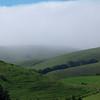 Fog in Benicia