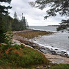 Acadia National Park in Maine 2
