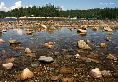 Stone beach at Schoodic section of Acadia National Park.