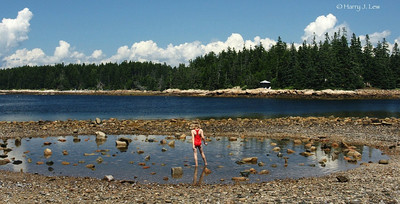 Little girl at Acadia National Park on the Schoodic peninsula.