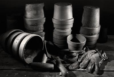 potting_shed_19-1-21