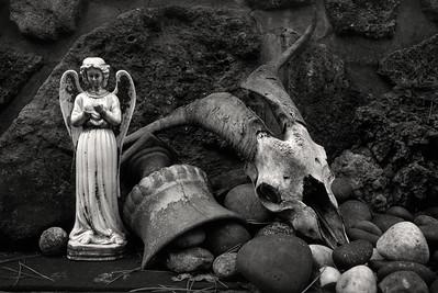 angel+ram_skull2_19_1-10
