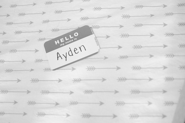 Ayden_DSC2561