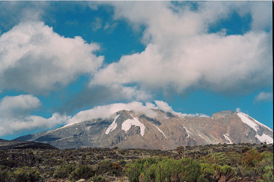 Mount Kilimanjaro from Shira Plateau