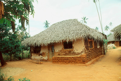 Zanzibar Native House