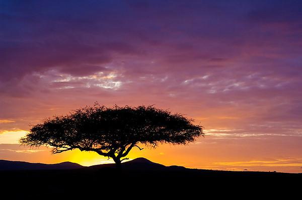#250 Sunrise, Maasai Mara, Kenya