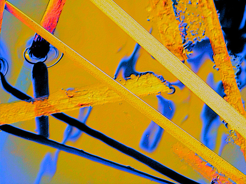 Textured water reed abstract, original photo was shot at Glacier Ridge Metro Park outside Dublin, Ohio