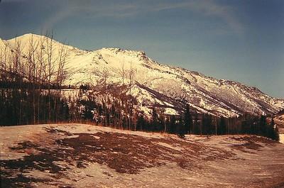 foothills Alaska Range, Faibanks-Anchorage Hwy, April