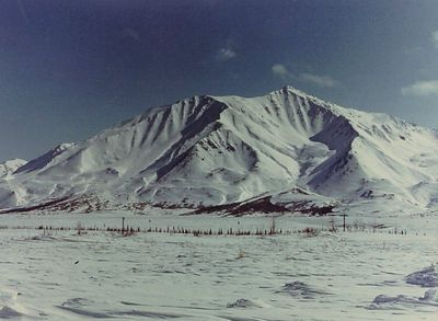 Denali Hwy, after an April snow