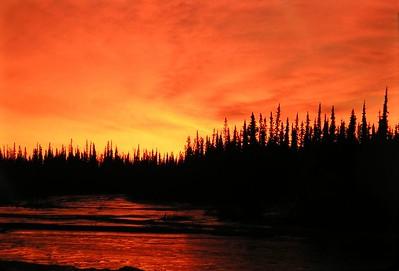 Tanana River, November dawn, 930am