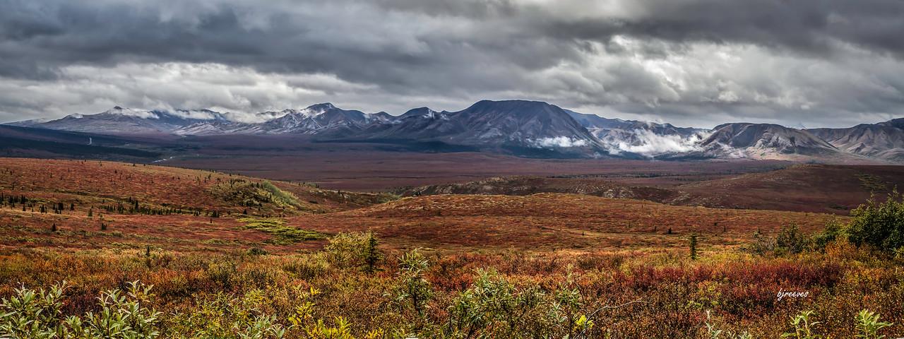 Fall Tundra in Denali National Park