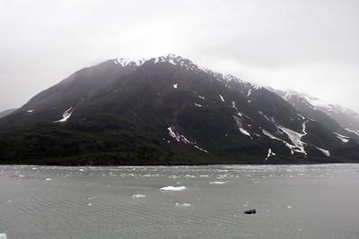 Disenchantment Bay, Alaska