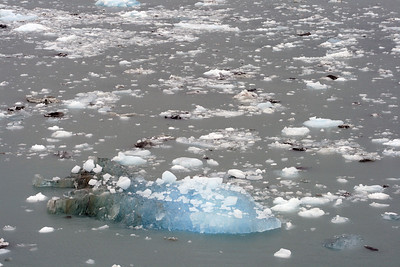 Sea Ice in Disenchantment Bay, Alaska