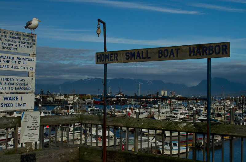 Homer Spit marina.<br /> Photo © Cindy Clark