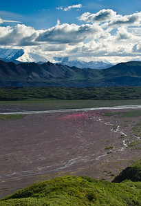 DENALI AND GLACIER