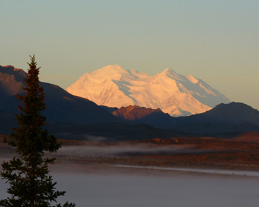 Denali at Sunrise, Denali N.P., Ak
