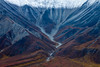 I had never seen color in mountains like the ones in Denali National Park.  <br /> Photo © Cindy Clark