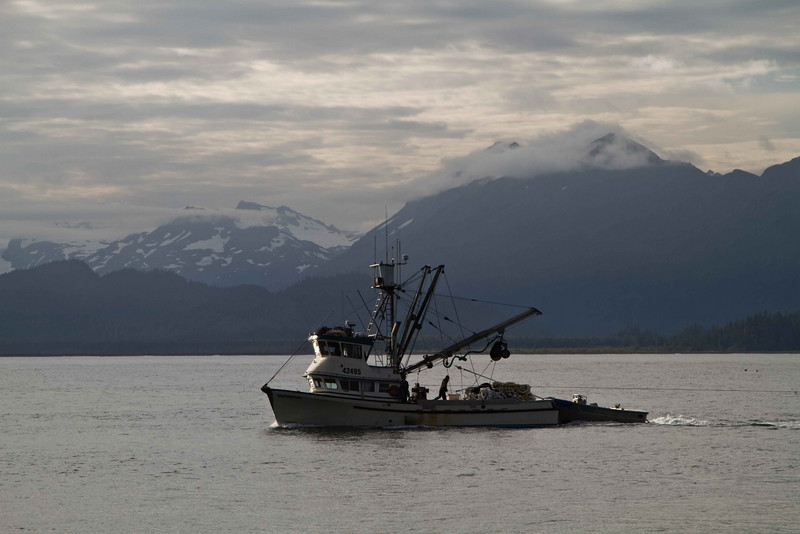 Returning to port at Homer.<br /> Photo © Carl Clark