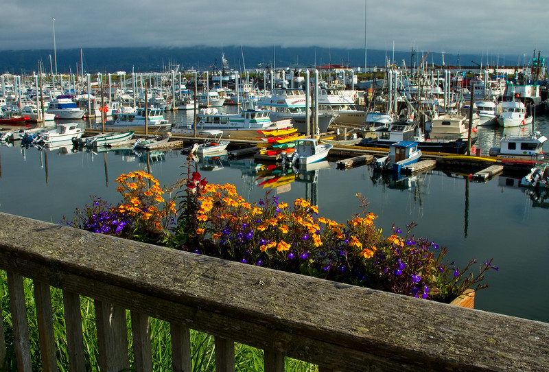 Lots of color at the marina on the Homer Spit.<br /> Photo © Cindy Clark
