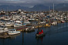 A fine morning at Homer harbor.<br /> Photo © Carl Clark