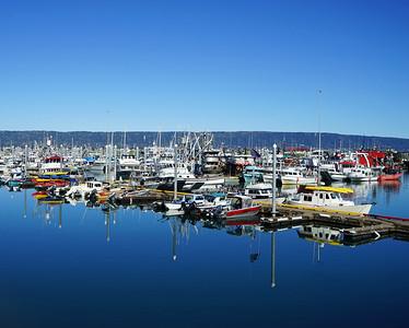 Homer Harbor, Ak