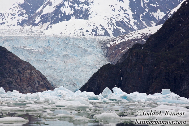 South Sawyer Glacier practically falls into the fjord.