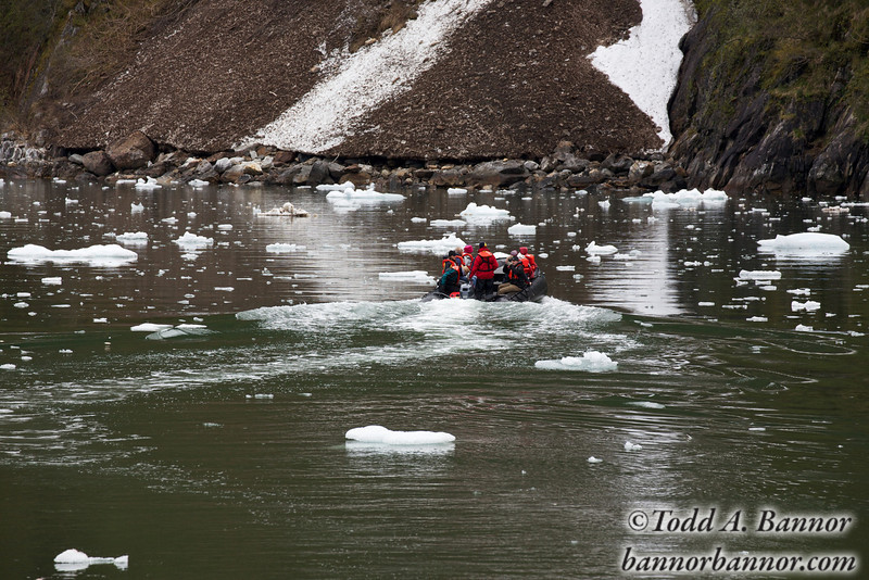 A Zodiac makes its way through the ice.