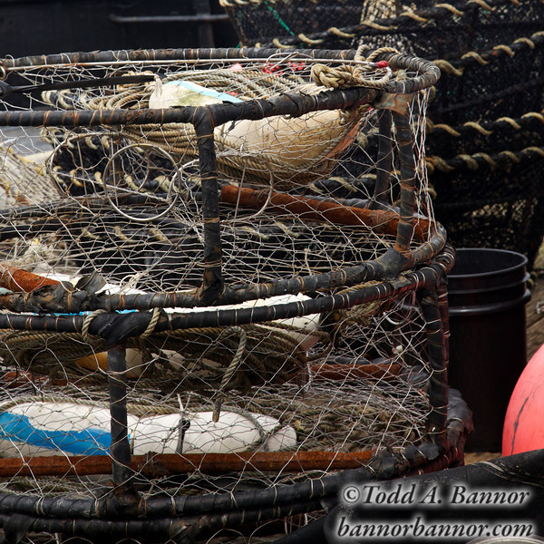 Crab pots.