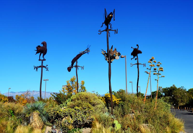 Albuquerque Botanic Gardens 104