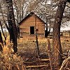 Old Homestead in Iron County, Utah
