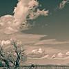 February Cloudscape