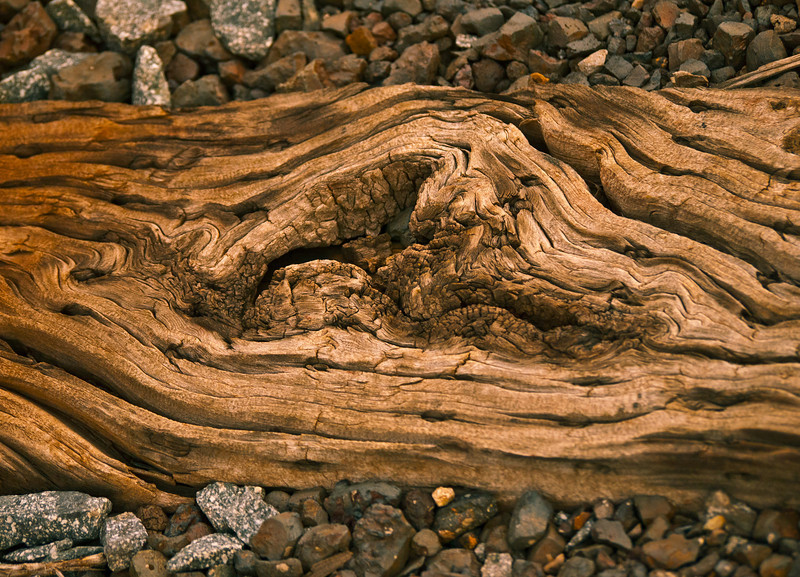 Extreme Detail in Creasote Soaked Railroad Tie!