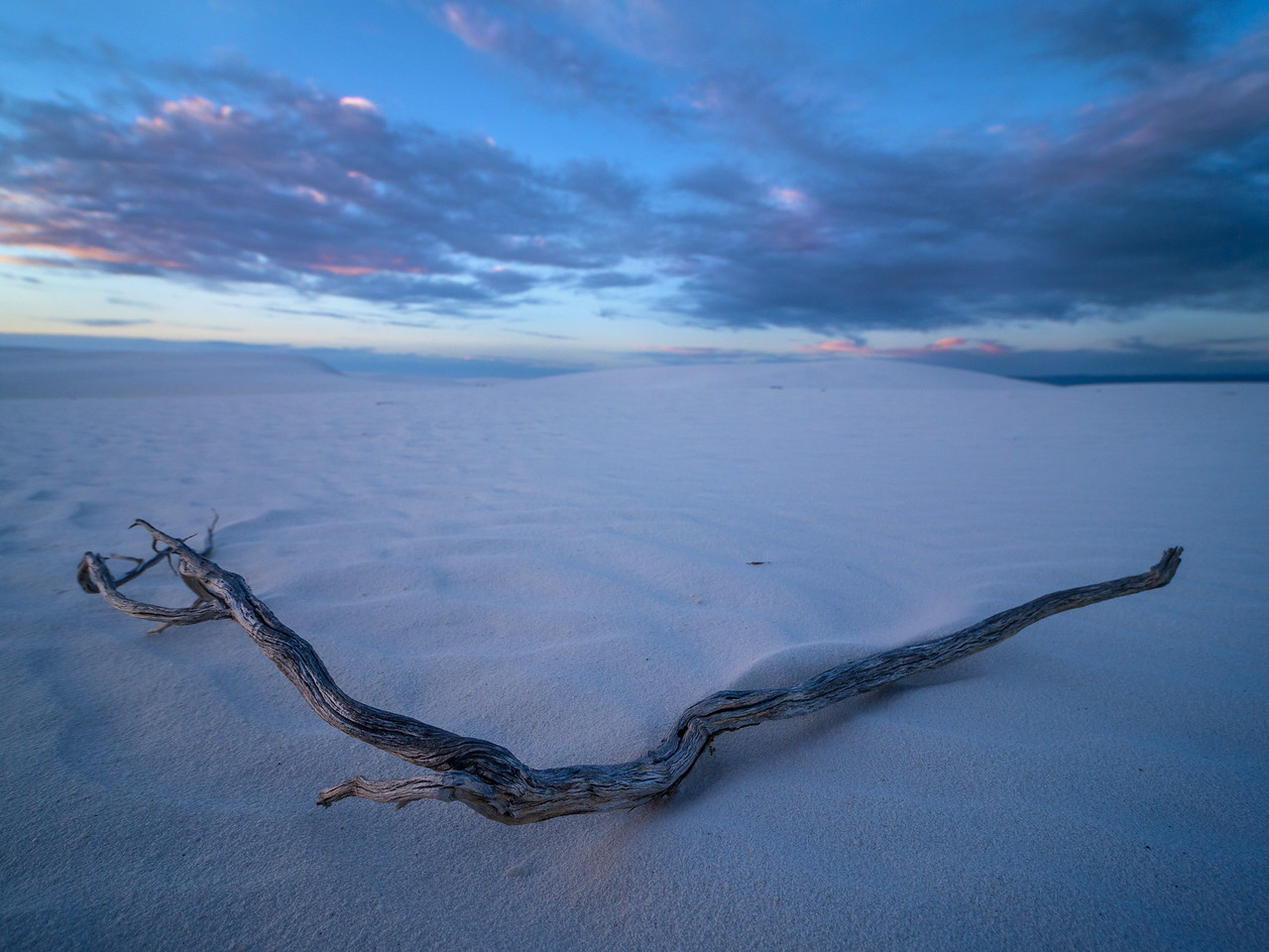 Stick at White Sands National Monument in New Mexico