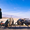 Portrait of Tony with his bike and gear trailer. He told us he was carrying about 650 pounds worth of gear and most of the stuff he found on road-sides all over the United States. He's a neonomad!