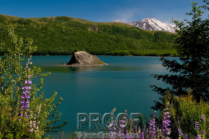 Coldwater Lake with Mt St Helens Framing in the Background