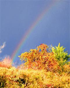 A rainbow was visible amid the fall colors near Elyria Fire Department on Cedar Street on Oct. 23. STEVE MANHEIM/CHRONICLE