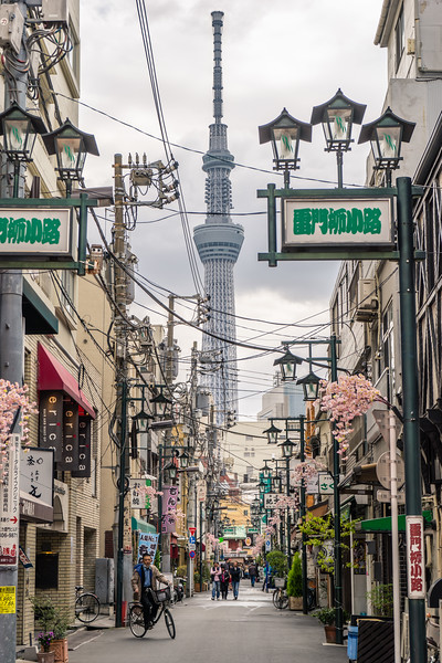 Skytree Alley